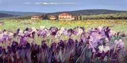 Campo Viola VI by Bruno Tinucci -  sized 32x16 inches. Available from Whitewall Galleries